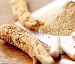 Ginseng Root Extract 20% Ginsenosides